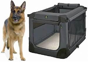 Cage Transport Chien Voiture : cage pour chien transport toutes les cages de transport pour chien pas cher solde promo meilleur ~ Medecine-chirurgie-esthetiques.com Avis de Voitures