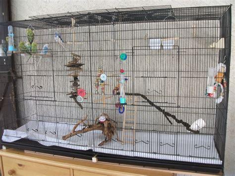 maison dans la cagne la famille s agrandit cages xl et voli 232 res d int 233 rieur