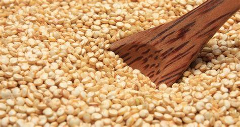 Graine Germées De Quinoa