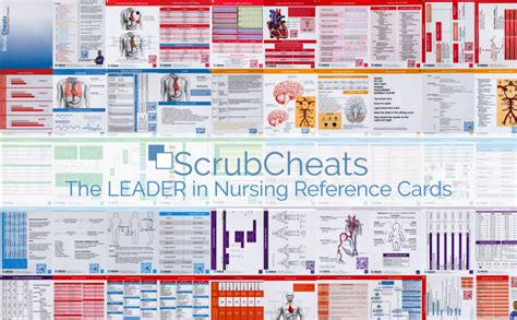 scrubcheats  nursing reference cards heavy laminated