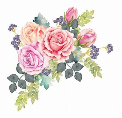 Watercolor Flowers Flower Watercolour Bouquet Rose Clipart