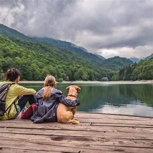 Positive, U0026, Negative, Effects, Of, Ecotourism