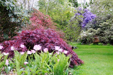 Mon Jardin Japonais  In My French Garden