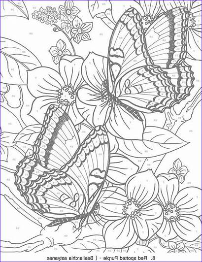 Coloring Pages Butterfly Books Number Amazing Animal
