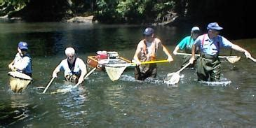 Pa Fish And Boat Commission Biologist Reports by Lackawanna River Biologist Report