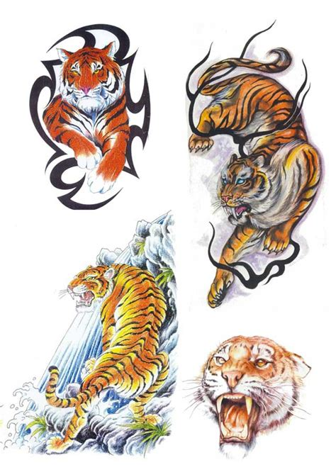 tiger tattoo designs fav images amazing pictures