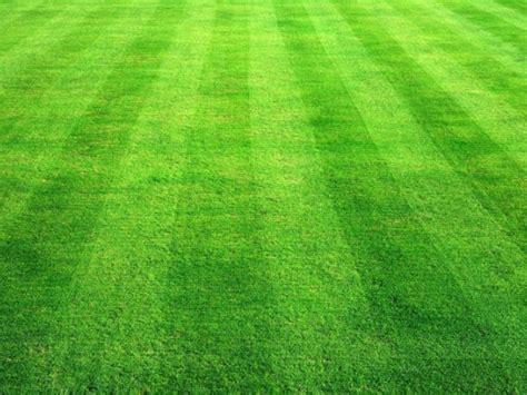 Forfar V Dunfermline at Station Park : Match Preview