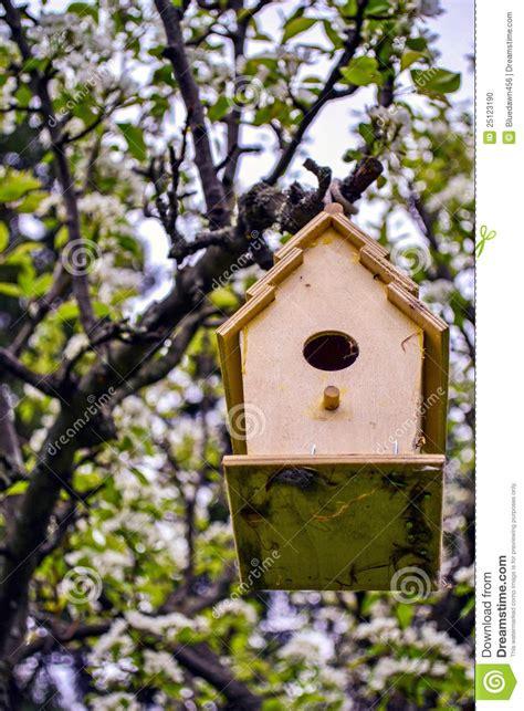 homemade bird house stock photo image