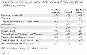 Debt, Gov't. Power Among Tea Party Supporters' Top Concerns
