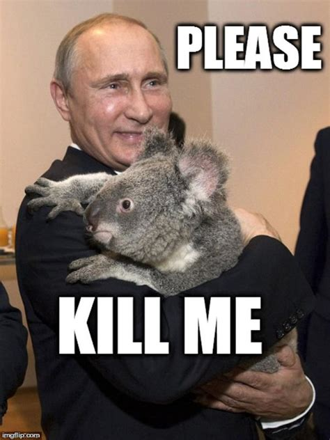 Kill Me Memes - image gallery kill me now meme