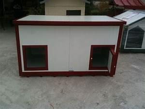 dual dog house 28 images large double dog house With dual dog house