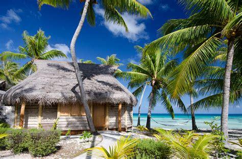 Beach Bungalow  Tikehau Pearl Beach Resort Hotel French