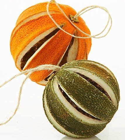 xmas tree that smells like orange best 25 orange tree ideas on orange ornaments orange diy kitchens and