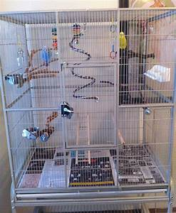 Large parakeet cages: for sale