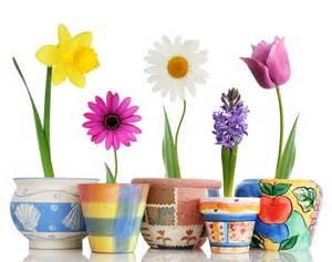 Vasi di fiori composizioni variet?