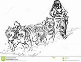 Sled Coloring Dog Dogs Alaskan Team Clipart Race Pages Iditarod Drawing Vector Dreamstime Musher Line Sledding Horse Wild Malamute Winter sketch template
