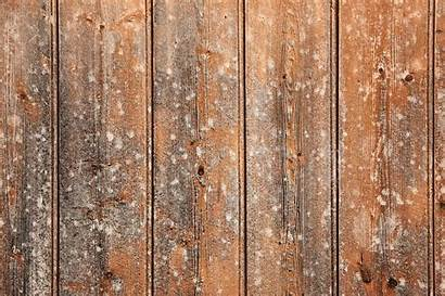 Texture Wood Wall Background Wooden Plank Textures