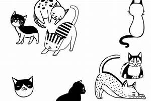 How to Draw a Cat - Hobbycraft Blog