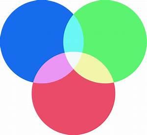 Acorn  Venn Diagram