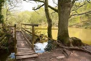 Petit Pont En Bois : le petit pont de bois landscape rural photos damien patard photographie ~ Melissatoandfro.com Idées de Décoration