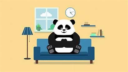 Panda Watching Thanks Behance