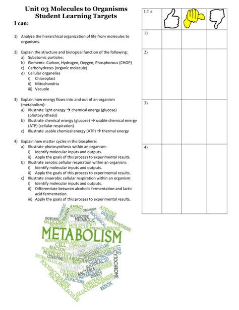 Usable 93 Fermentation Worksheet Answers Goodsnyccom