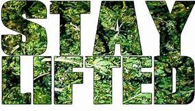 HAPPY 420 - #DANKALLIANCE Th?id=OIP