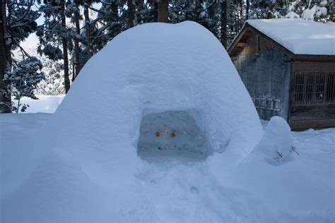 ookamikodomonohananoie hp photo winter