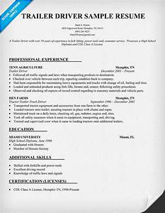 example creating customized report writer reports as web With truck driver resume templates free