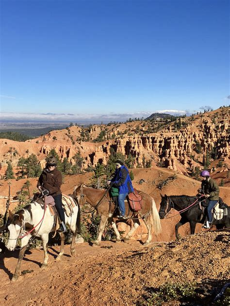 canyon horseback bryce utah riding nancy brown rides horse southern