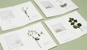 Was Ist Ein Herbarium : herbarium fakult t gestaltung w rzburg ~ A.2002-acura-tl-radio.info Haus und Dekorationen