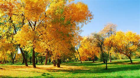 Glorious Autumn Sunshine Hd Wallpapers