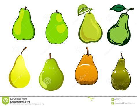 Green Yellow Orange Pear Fruits Stock Vector Image