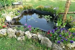 Plante Pour Bassin Extérieur : amenager un bassin exterieur 47419 ~ Premium-room.com Idées de Décoration