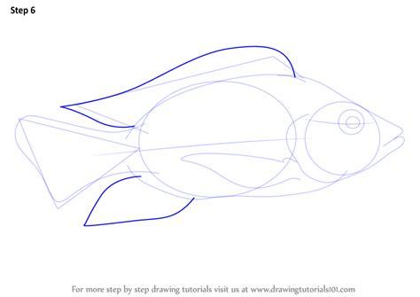 step  step   draw  tilapia drawingtutorialscom