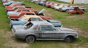 world39s biggest barn find has almost 400 classic and With car barn auto sales