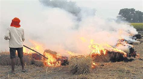 agricultural pollution  fields   burning