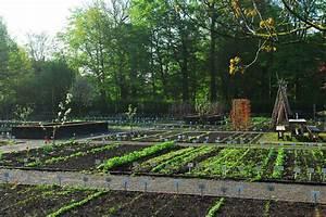 Mischkultur Im Garten : mischkultur im gem segarten ~ Orissabook.com Haus und Dekorationen