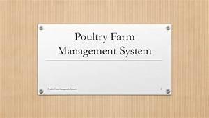 Poultry Farm Management System