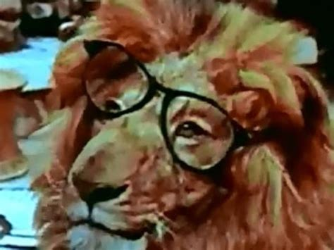 Clarence The Cross-Eyed Lion Movie Trailer - YouTube