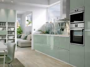 Cuisine Wenge Ikea kitchen kitchen ideas inspiration ikea