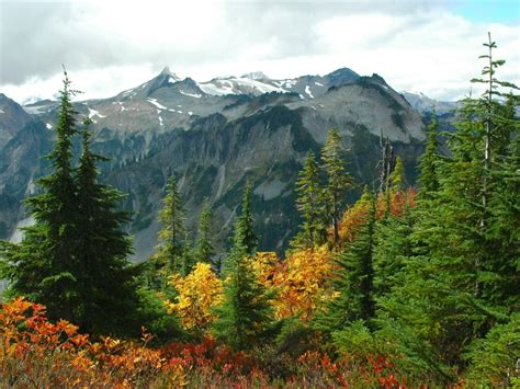 mountains landscapes nature forest 1600x1200 wallpaper ...