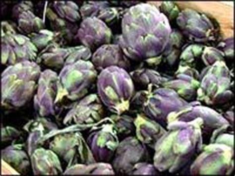 cuisiner artichaut violet recettes de cuisine barigoule d 39 artichauts poivrade du