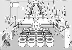 Ultimate Guide To Setup Your Grow Room
