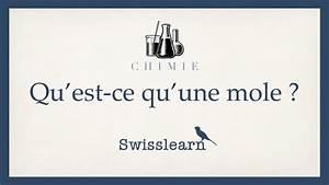 Qu Est Ce Qu Une Loggia : qu 39 est ce qu 39 une mole youtube ~ Dode.kayakingforconservation.com Idées de Décoration