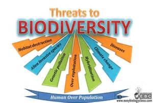 Major Threats to Biodiversity