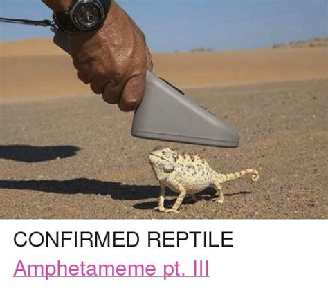Reptilian Meme - confirmed reptile amphetameme pt iii dank meme on sizzle