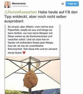 Was Vertreibt Wespen : runzelf chen tipps gegen wespen was tun bei wespen und ~ Articles-book.com Haus und Dekorationen