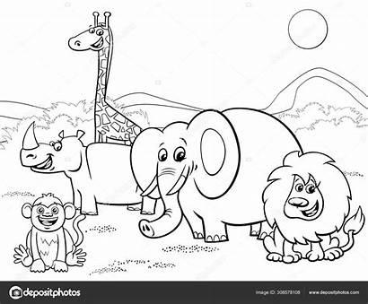 Safari Coloring Animals Cartoon Depositphotos Izakowski