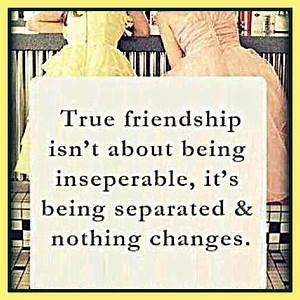 True Friendship... Friendship Wonderful Quotes